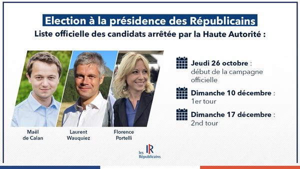 Les Républicains : 3 candidats pour l'élection à la présidence du parti